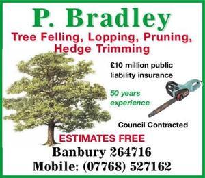 Peter Bradley Forestry