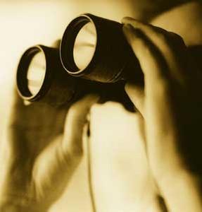 A & M Private Investigations